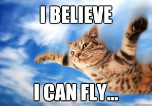 kitty can fly