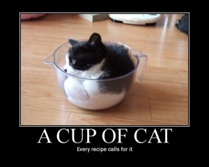 cup_of_cat